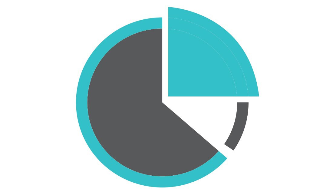 images/51/pie-graph.jpg
